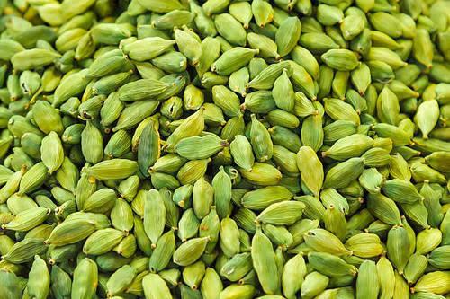 Photo - Agni Agriculture